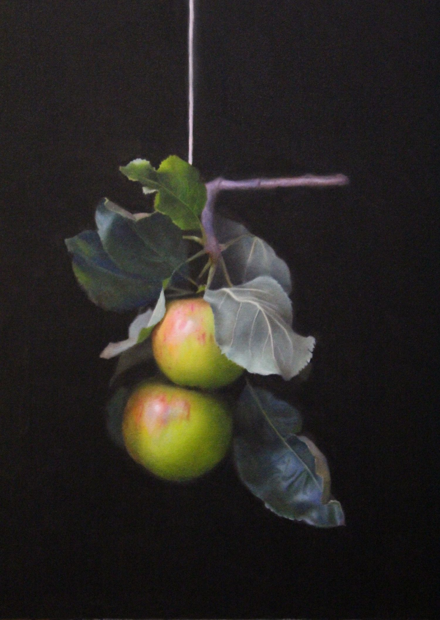 Two Apples by Chris Polunin